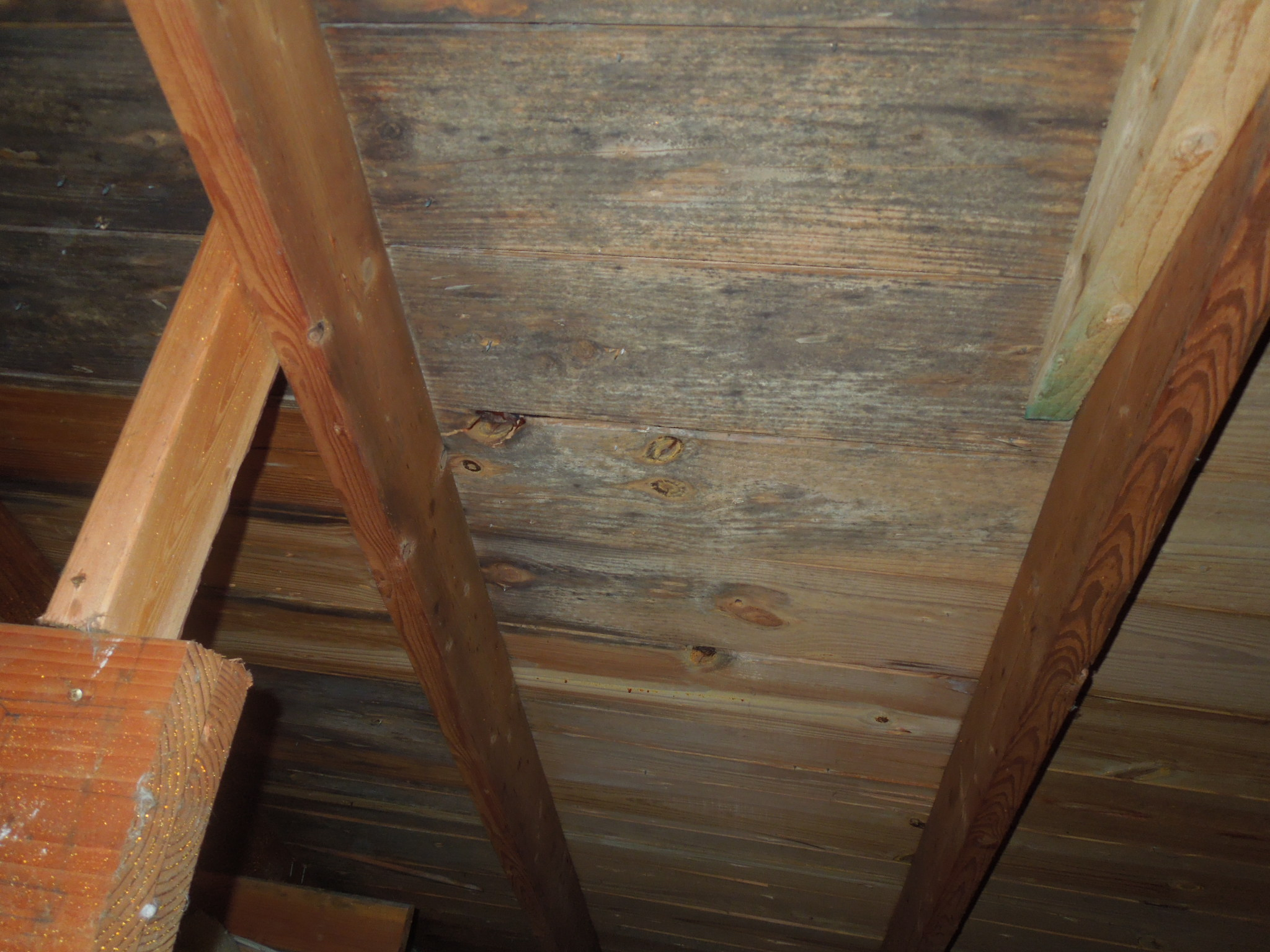 Widespread mold on attic sheathing